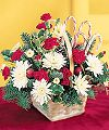 FTD� Candy Cane Lane Arrangement