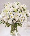 Květiny soucit, sympatie květiny, smuteční květiny, pohřební dodání, rostlina, kostel, pohřební služby, uspořádání, FTD