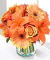 Léto Květiny, pády, květiny, díkuvzdání, uspořádání, on-line, doručování květin, rostlin, dárek, dárky, aranžmá, kytice, kytice, uspořádání, výzdobu, dodávka, Teleflora, drát
