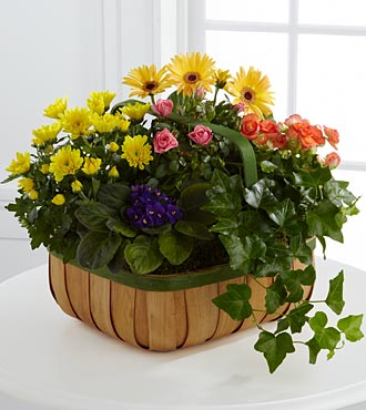 FTD Gentle Blossoms Basket - C26-4524