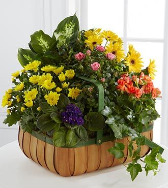 FTD Gentle Blossoms Basket - PREMIUM