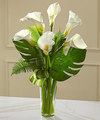 Image of Standard version for FTD Always Adored Calla Lily Bouquet