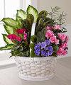 Ftd Peaceful Garden Planter