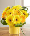 Image of Deluxe version for FTD Sunny Surprise Bouquet