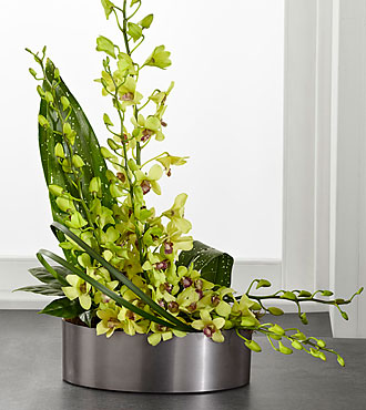 FTD Irresistible Orchid Arrangement - C25-5191S