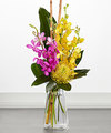 Image of Standard version for FTD Touch of Tropics Bouquet