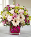 FTD Perfect Princess New Baby Bouquet - PREMIUM