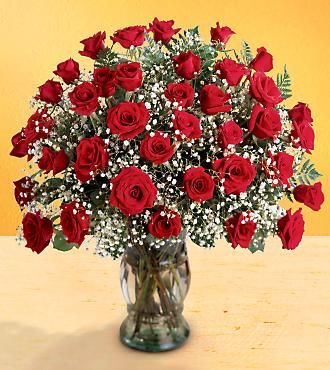 FTD Premium 3 Dozen Long Stemmed Red Rose Bouquet