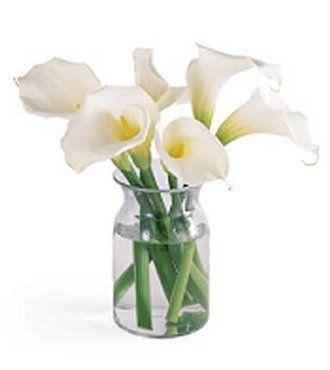 http://flowersfast.com/fd012l.jpg