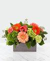 Hello Gorgeous Bouquet - DELUXE