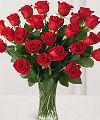 Růže, poslat květiny, výročí, romantický, online květinářství, doručování květin, růže, dárkové, kytice, uspořádání, FTD, Teleflora