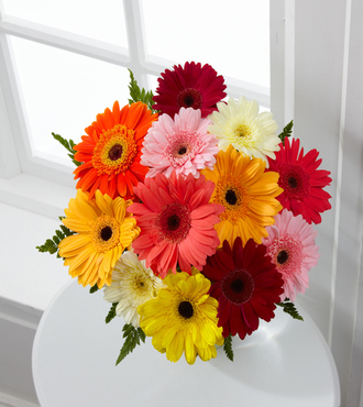 Colorful World Gerbera Daisy Bouquet - 12 Stems No Vase - FedEx - WGF858