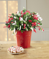 Make It Merry Cactus and Snowman Lollipop-BETTER - FedEx