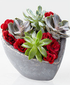 Image of Standard version for Succulent Heart Garden - FedEx
