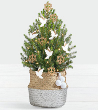 Dove and Peace Spruce Tree - FedEx - WGP1402