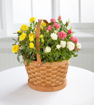 The Better Homes and Gardens Rose Garden Basket - FedEx
