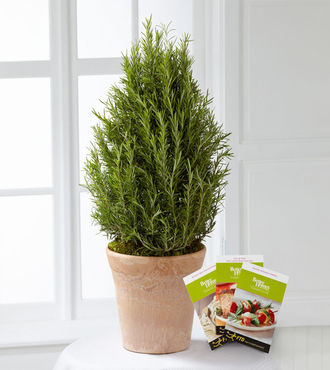 The FTD Rosemary Riches Tree by Better Homes and Gardens - FedEx