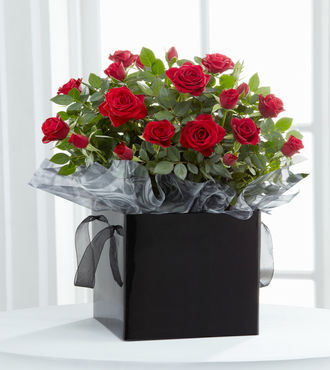 Pure Elegance Mini Rose Plant - FedEx