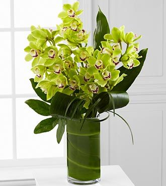 Vision Luxury Orchid Bouquet - 8 Stems - LX118