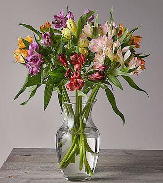 Flowers Fast coupon: Wanna Have Sun Alstroemeria Bouquet - FedEx