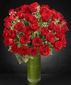 Image of Standard version for Fate Luxury Rose Bouquet - 48 Stems of 24-inch Premium Long-Stemmed Roses