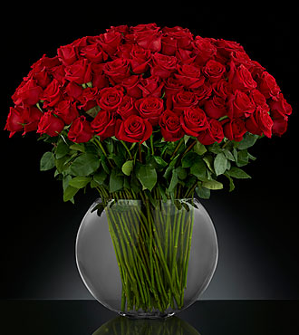 Breathless Luxury Rose Bouquet 24-inch Premium Long-Stemmed Roses - RP84