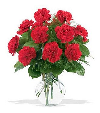 Flower Delivery International on Red Carnations   Birthday Flowers   Flowers Fast