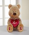I Love U Plush Teddy Bear - WebGift