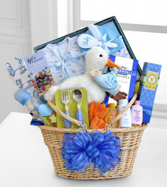 Special Stork Delivery Baby Boy Basket - WebGift