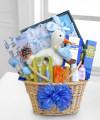 Special Stork Delivery Baby Boy Basket - WebGift