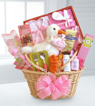 Special Stork Delivery Baby Girl Basket - WebGift