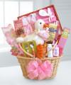 Special Stork Delivery Baby Girl Basket - WebGift