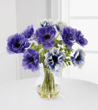 Jane Seymour Silk Botanicals Purple and Blue Anemones - WebGift